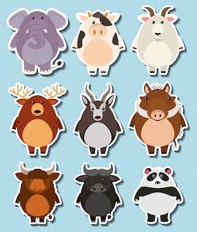 Sticker set with many wildlife on blue background