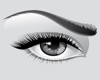 Stock Ilustration Eyebrow Vector