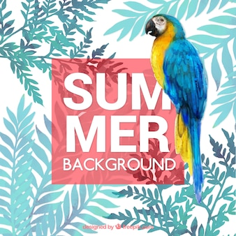 Summer tropical background with watercolors