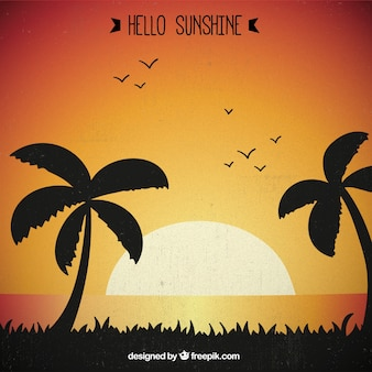 Sunshine background with palm trees