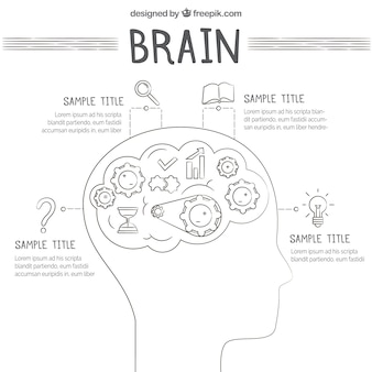 Template of human brain infographic with icons