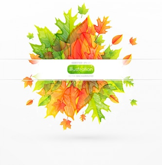 Template web maple wallpaper colorful