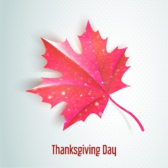 Thanksgiving background with beautiful leaf