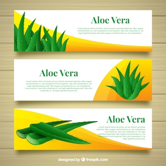Three banners of aloe vera with abstract shapes