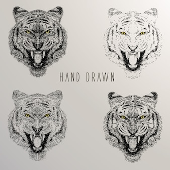Tiger's head hand drawn collection