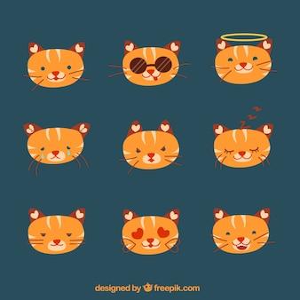 Tiger sticker collection