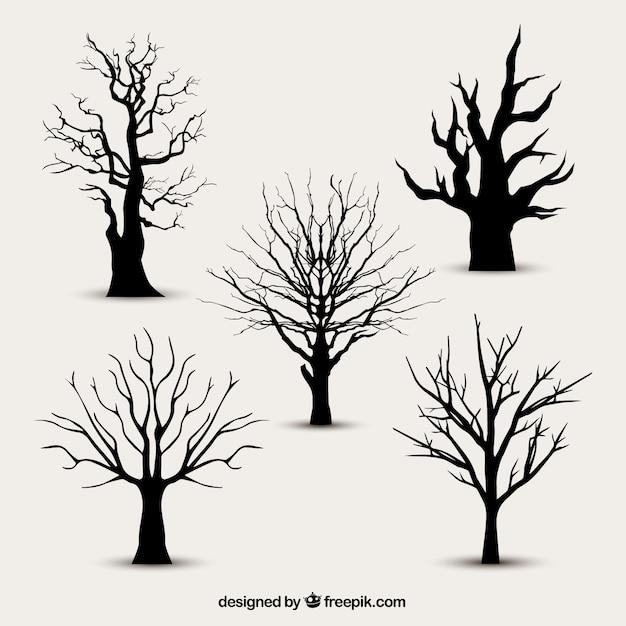 1323 best * Tree Silhouettes, Vectors, Clipart, Svg, Templates ...