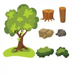 Tree, stones, leaves and stumps