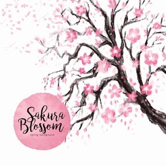 自然の桜の花のイラスト