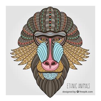 Tribal baboon portrait