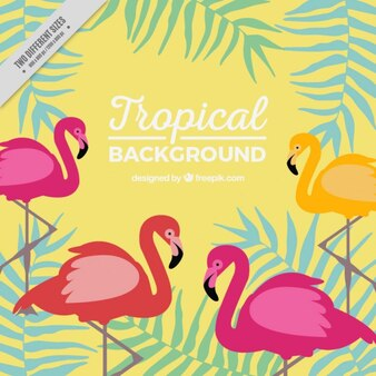Tropical background with flamingos and leaves