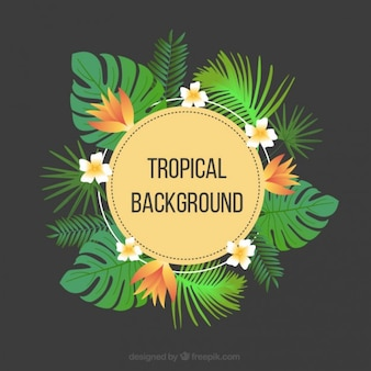 Tropical background with flowers and palm leaves
