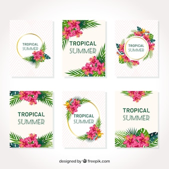 Tropical card collection
