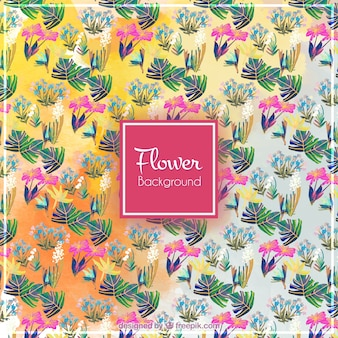 Tropical flowers background and leaves in watercolor effect