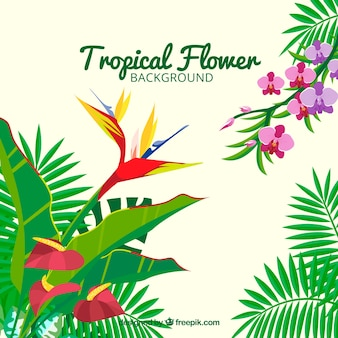 Tropical flowers background with leaves of palm trees