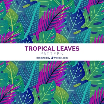 Tropical leaves pattern background with flat design