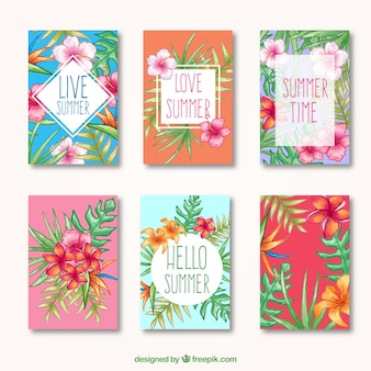 Tropical summer cards, hand drawn