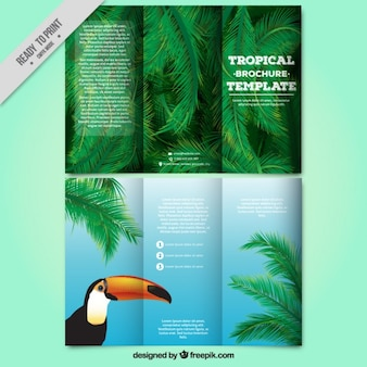 Tropical trifold with a toucan and palm leaves