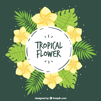 Tropical wreath background with yellow flowers