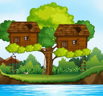 Two treehouses on the tree by the river