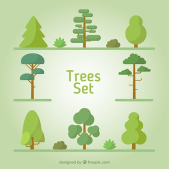 Types of trees in flat design