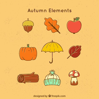 Typical autumn elements in a simple style