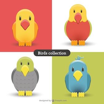Variety cute birds