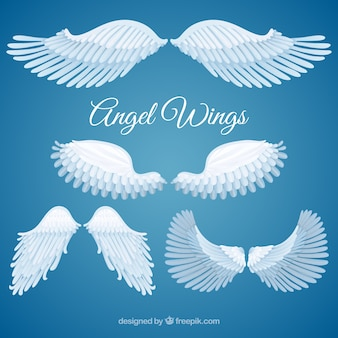 Variety of angel wings