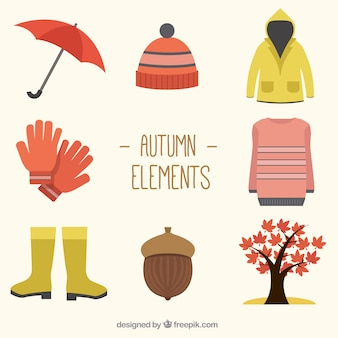 Variety of autumnal accessories