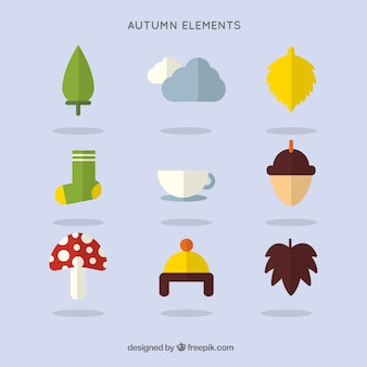 Variety of autumnal elements