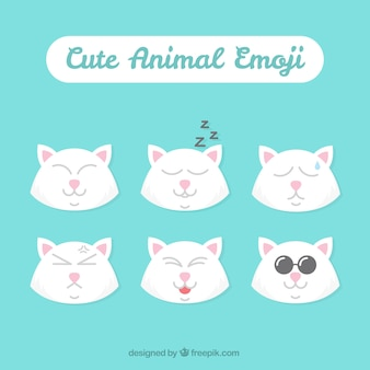 Variety of cat emoticons in flat design