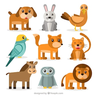 Variety of cute flat animals