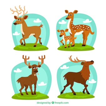 Variety of deers illustration
