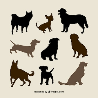 Variety of dog breeds silhouettes