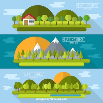 Variety of flat forest banners