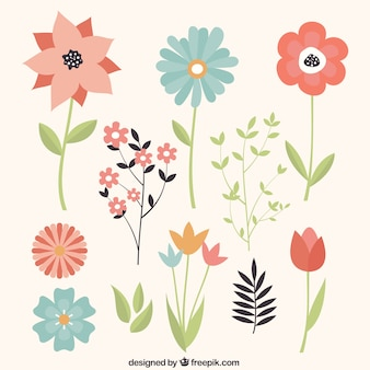 Variety of flowers in vintage style