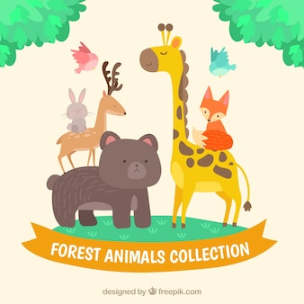 Variety of forest animals