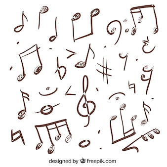 Variety of hand drawn musical notes
