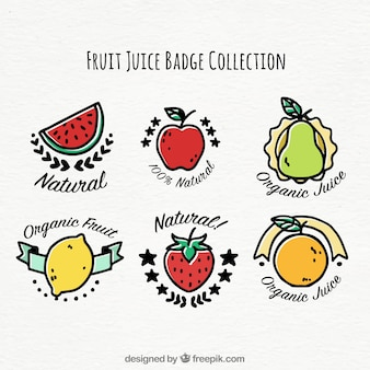 Variety of six hand-drawn badges with different fruits