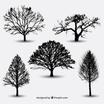 木のシルエットのバラエティ