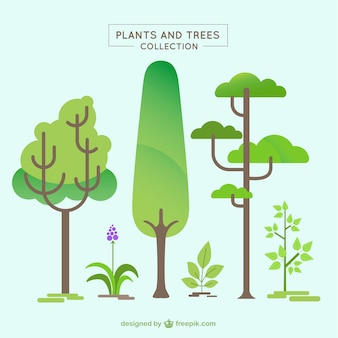 Variety of trees and plants in flat design