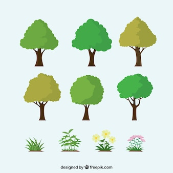 Variety of trees and plants