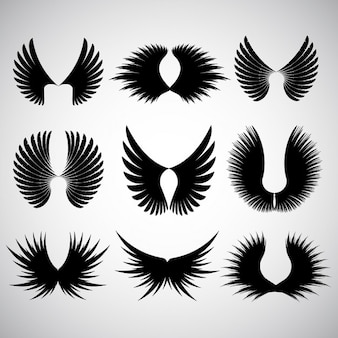 Various different designs of wing silhoeuttes