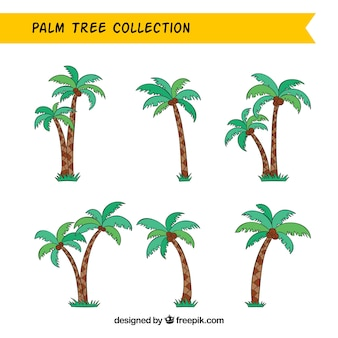 Various hand drawn palm trees with coconuts