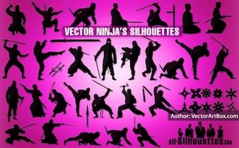 Vector ninja
