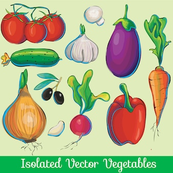 Vegetable vector collection
