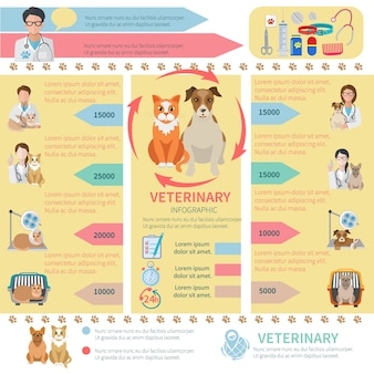 Veterinary infographic template