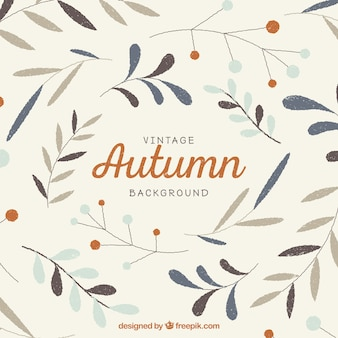Vintage autumn background with hand drawn leaves