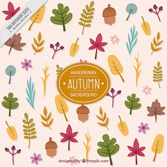 Vintage background of hand drawn autumn leaves