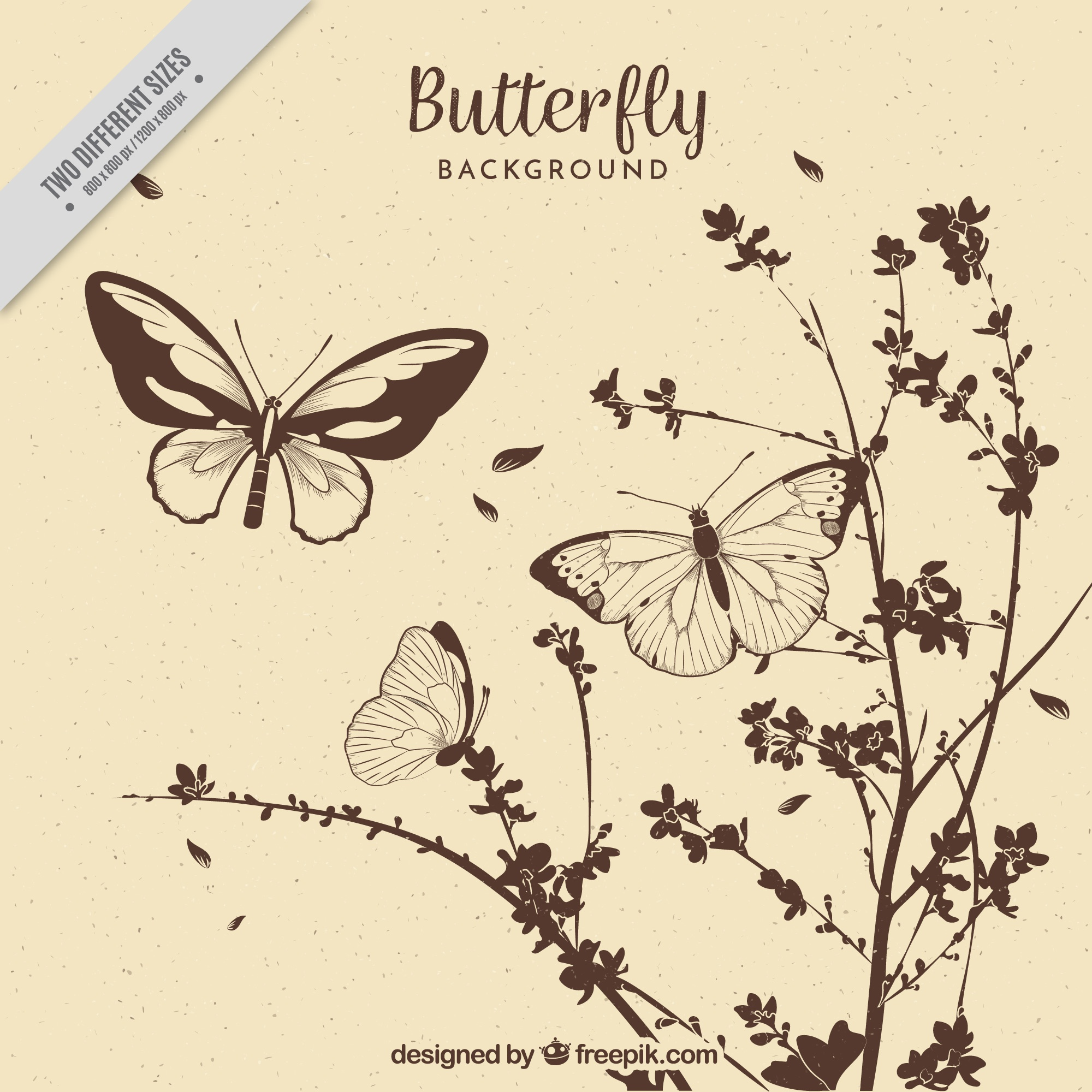 Vintage background of hand drawn flowers and butterflies